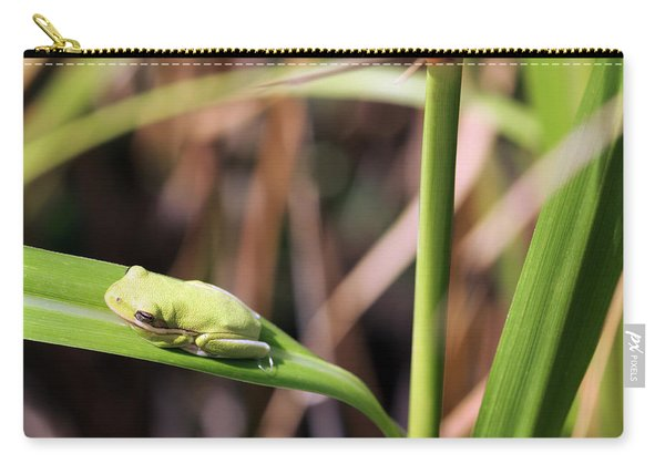 Lone Tree Frog Carry-all Pouch