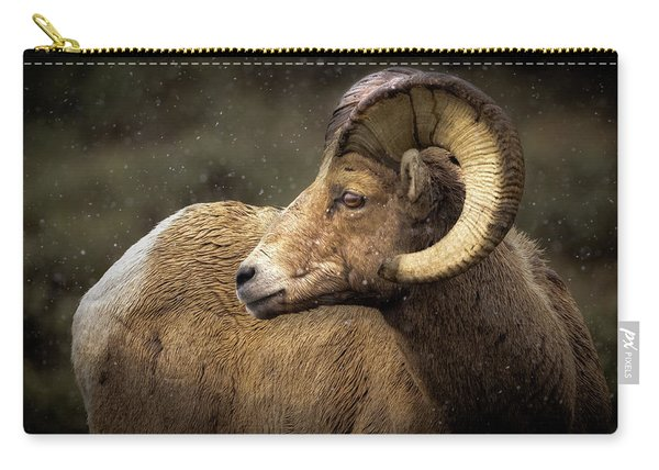 Looking Back - Bighorn Sheep Carry-all Pouch