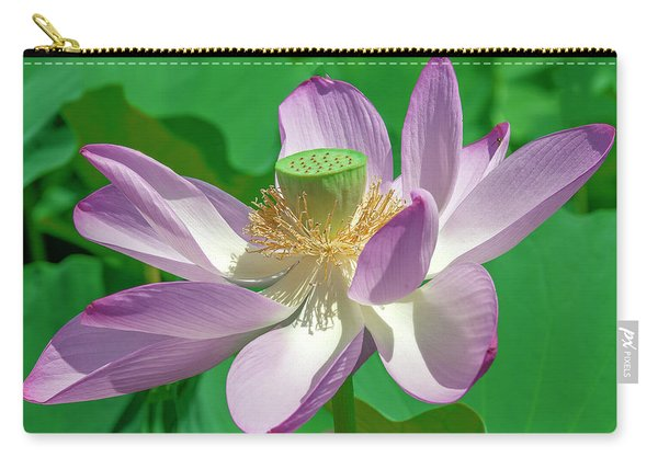 Lotus--fading II Dl0080 Carry-all Pouch