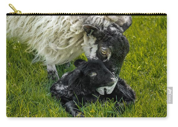 Carry-all Pouch featuring the photograph Just Born by Nick Bywater