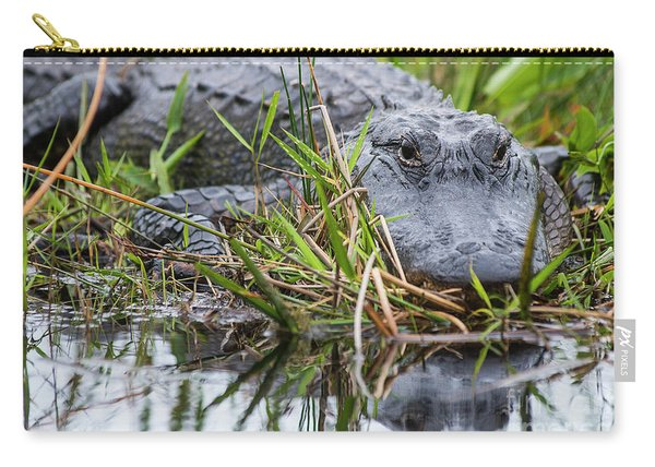 Loxahatchee Alligator-0639 Carry-all Pouch
