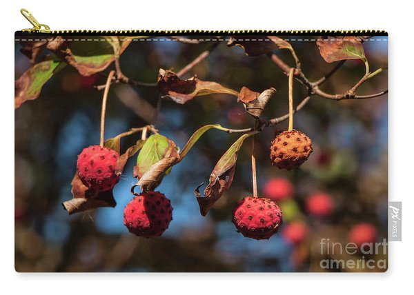 Lychees Carry-all Pouch