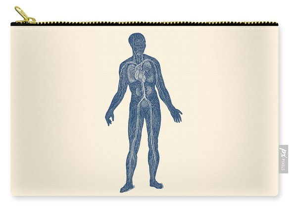 Lymphatic And Circulatory System - Vintage Anatomy Carry-all Pouch