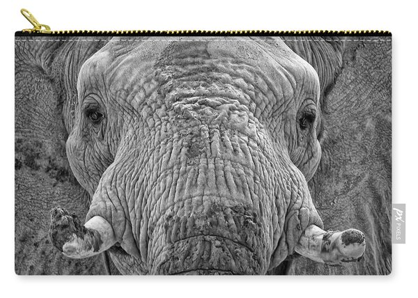 Mabu Up Close N Personal Carry-all Pouch