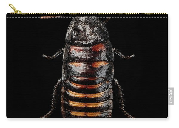 Carry-all Pouch featuring the photograph Madagascar Hissing Cockroach by Sergey Taran