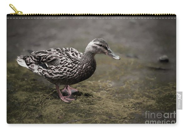 Malard,duckling Carry-all Pouch