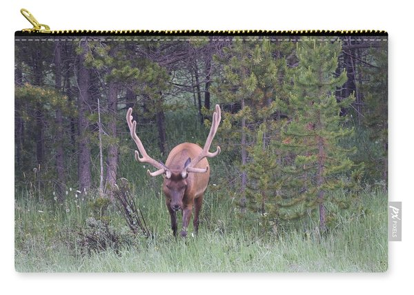 Carry-all Pouch featuring the photograph Bull Elk Rmnp Co by Margarethe Binkley