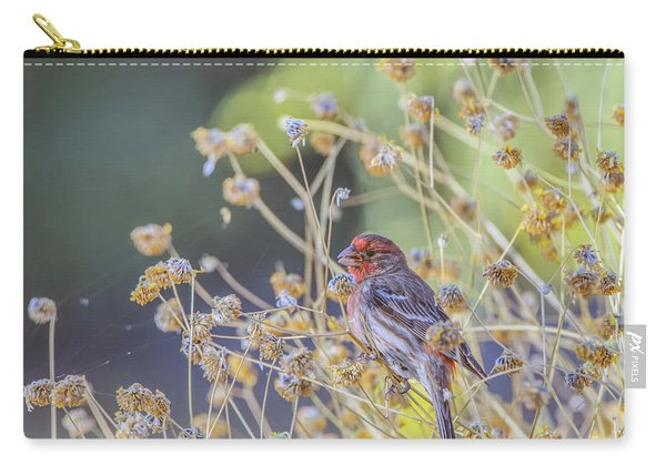 Male House Finch 7335 Carry-all Pouch