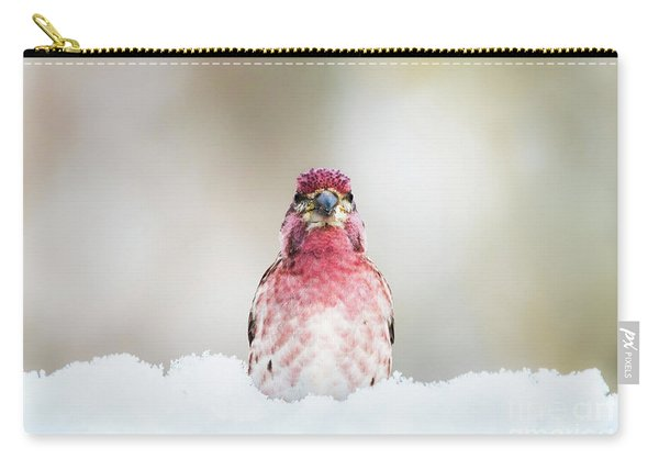 Male House Finch Carry-all Pouch