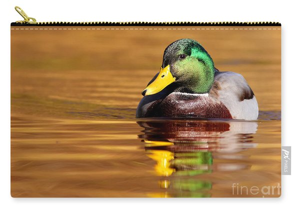 Mallard Drake In The Golden Water Carry-all Pouch