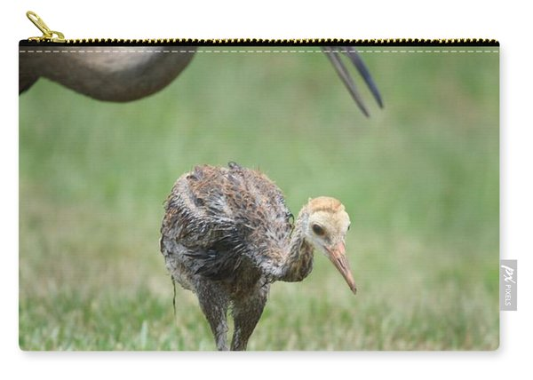 Mama And Juvenile Sandhill Crane Carry-all Pouch