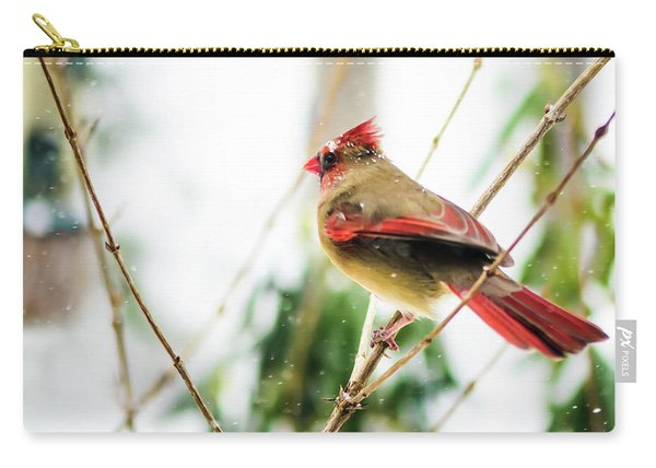 Mama Cardinal Carry-all Pouch