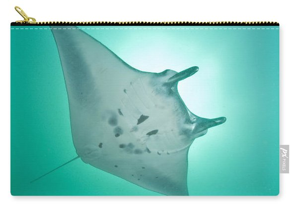 Manta Ray With White Belly, Komodo Carry-all Pouch