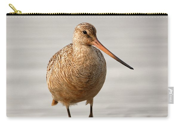 Marbled Godwit - Beauty Carry-all Pouch