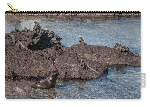 Marine Iguanas And Sealion Pup At Punta Espinoza Fernandina Island Galapagos Islands Carry-all Pouch