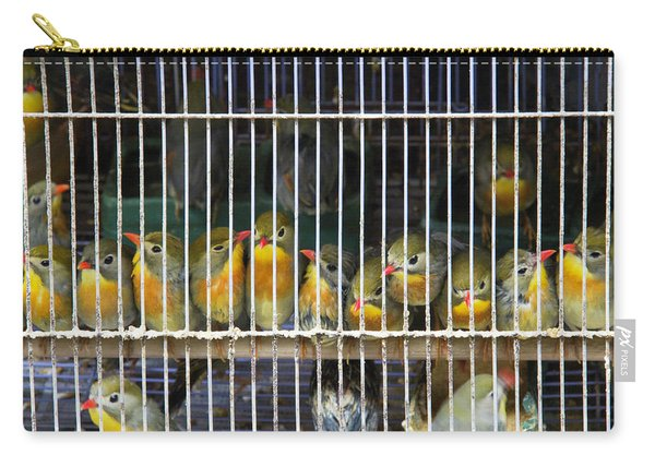 Market Finches Carry-all Pouch