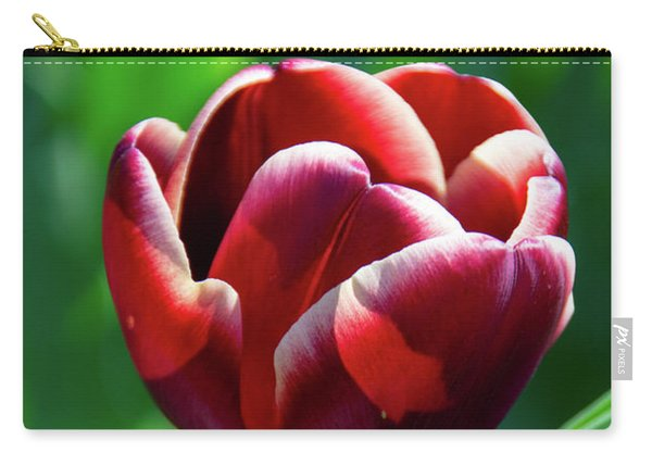 Maroon Tulip Carry-all Pouch