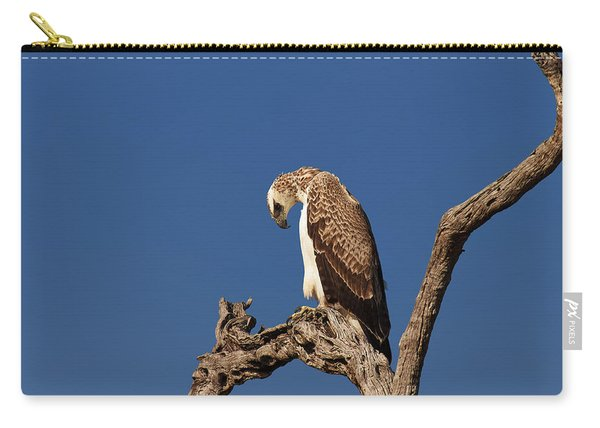 Martial Eagle Carry-all Pouch