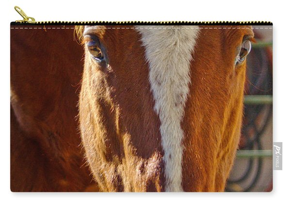 Mccool, Grandson Of Secretariat Carry-all Pouch