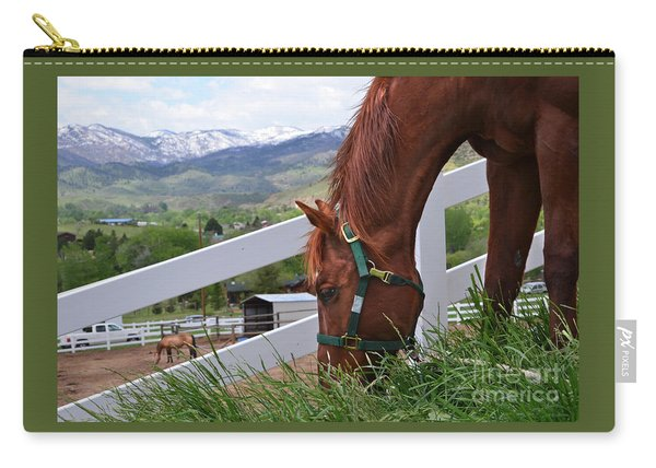 Mccool Grazing Carry-all Pouch