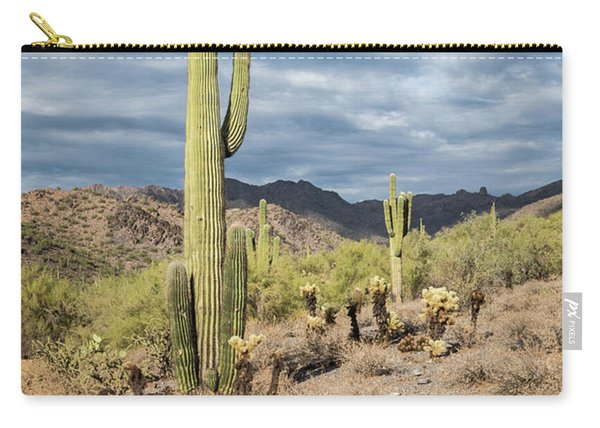 Mcdowell Cactus Carry-all Pouch