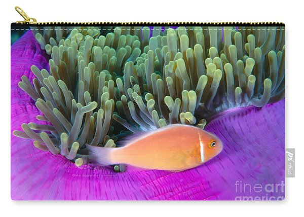 Micronesia, Marine Life Carry-all Pouch