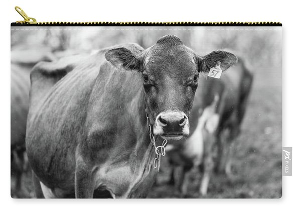 Milk Cow Stowe Vermont In Black And White Carry-all Pouch