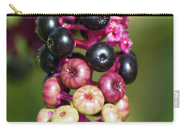 Mixed Berries On Branch Carry-all Pouch