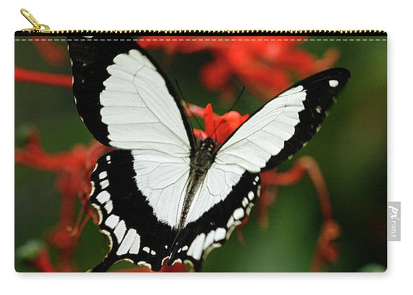 Mocker Swallowtail Carry-all Pouch