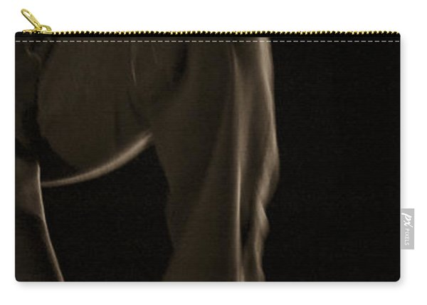 Carry-all Pouch featuring the photograph Modern Dance 12 by Catherine Sobredo