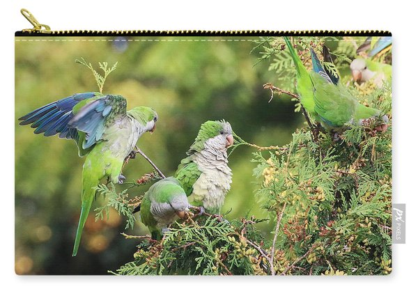 Carry-all Pouch featuring the photograph Monk Parakeets Feeding On Evergreens 2 by William Selander