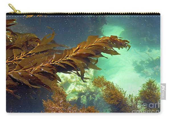 Monterey Bay Seaweed Carry-all Pouch