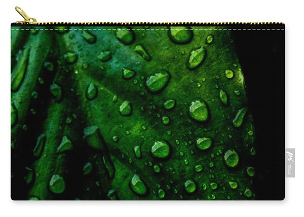 Moody Raindrops Carry-all Pouch