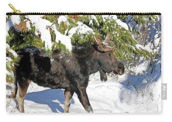 Moose In Snow Carry-all Pouch
