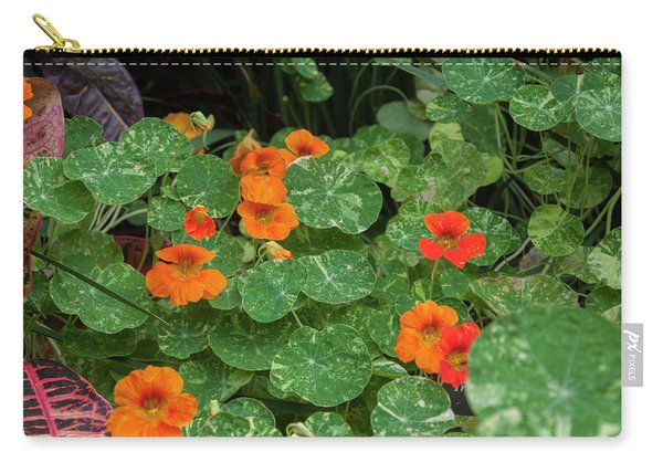 Morning In Longwood Gardens Carry-all Pouch