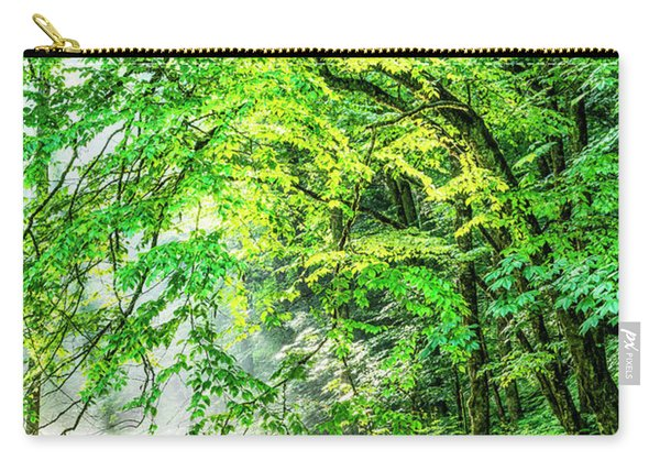 Morning Light In The Forest Carry-all Pouch