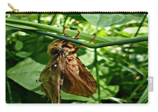 Moth At Rest Carry-all Pouch