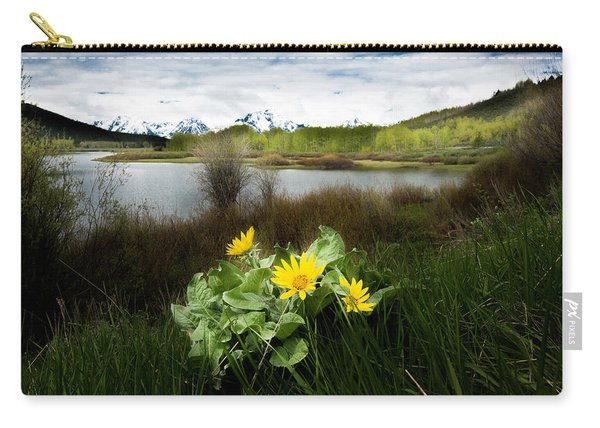 Mount Moran Spring Carry-all Pouch