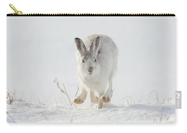 Mountain Hare Approaching Carry-all Pouch