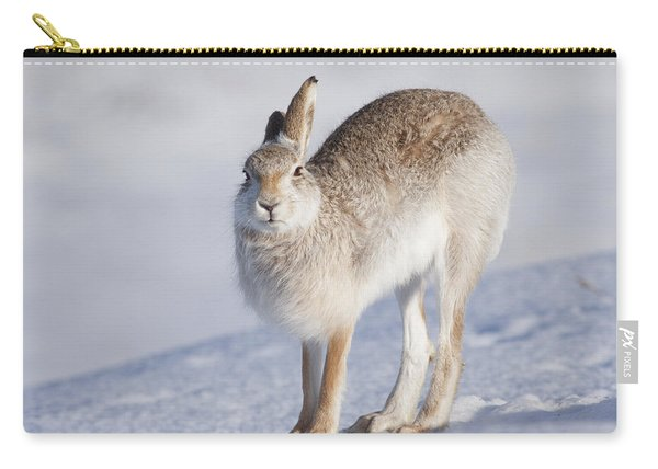 Mountain Hare In The Snow - Lepus Timidus  #2 Carry-all Pouch