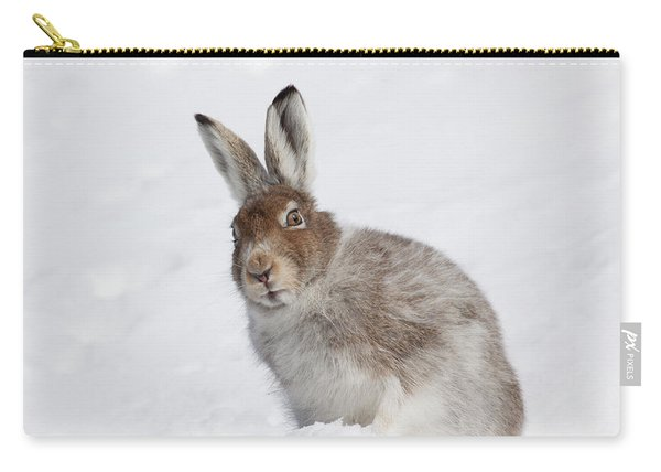 Mountain Hare In Winter Carry-all Pouch