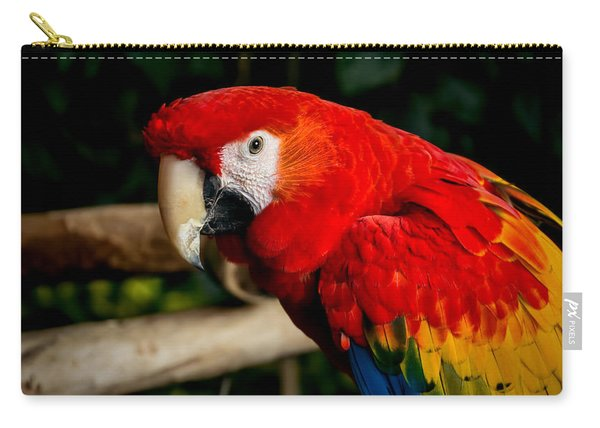 Mr Colorful  Carry-all Pouch