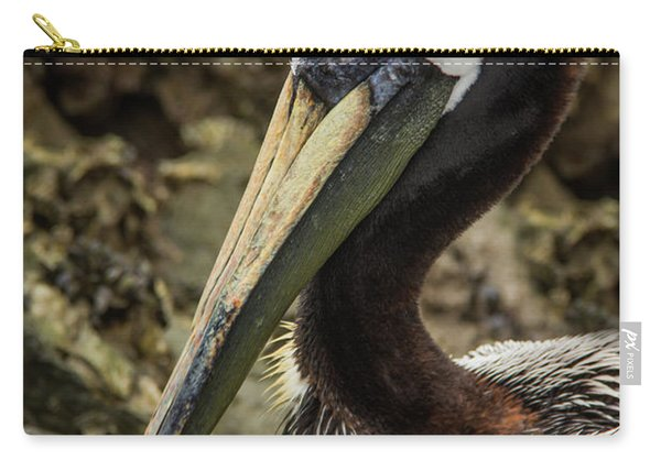 Mr. Cool Wildlife Art By Kaylyn Franks Carry-all Pouch