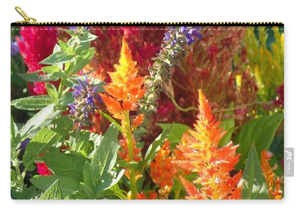 Multi-color Energy Carry-all Pouch