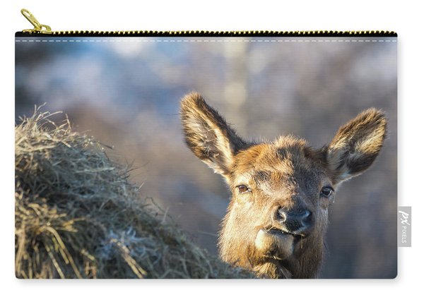 Munching Carry-all Pouch