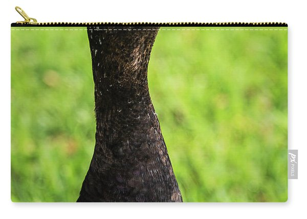 Muscovy Duck-0271 Carry-all Pouch