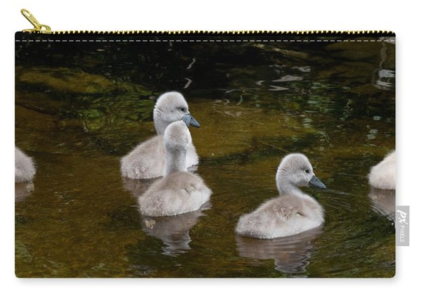Mute Swan Babes Carry-all Pouch