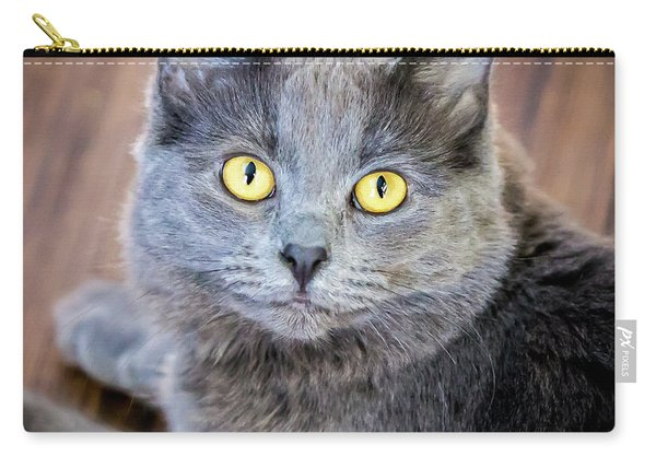 My Name Is Smokey Carry-all Pouch
