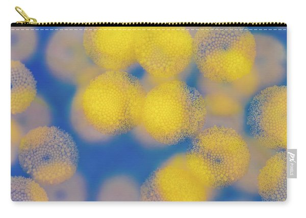 Natural Lights Carry-all Pouch
