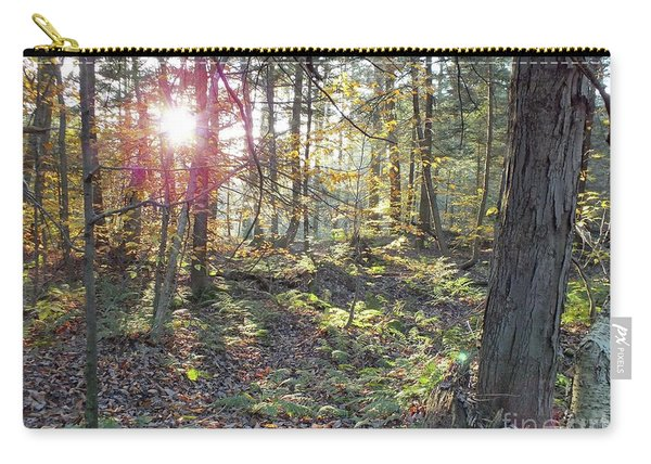 Nature's Beauty - Ricketts Glen Carry-all Pouch